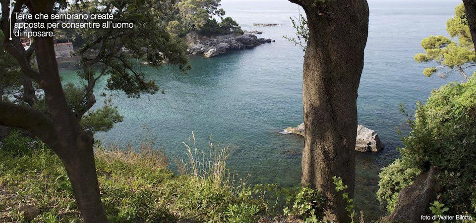 Case al mare in vendita liguria lerici immobili di pregio for Piani di caverna di garage uomo